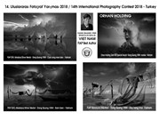 Vietnamese photographers win big at Turkey's int'l contest