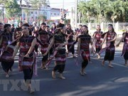 Tay Nguyen Gong Culture Festival closes