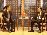 Deputy PM Trinh Dinh Dung busy with meetings in RoK