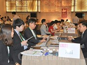 Japanese consumer goods producers explore Vietnamese market
