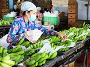 Vietnam spends 1.57 billion USD on fruit, vegetables in 11 months