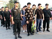 Chinese internet swindlers arrested in Lao Cai province