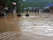 Vietnam among worst hit nations by extreme weather in past 20 years