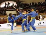 Arab Vovinam Federation established