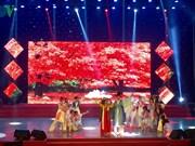Chinese artists win international art festival in Da Nang