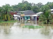 Torrential rains wreak havoc on Quang Nam