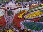 Amazing International Flower Festival opens in Thailand's Khon Kaen