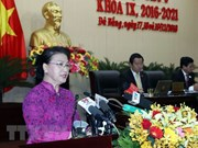 NA Chairwoman asks Da Nang to become smart city