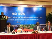 Experts seek solutions to strengthen connectivity in Mekong Delta