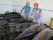 Binh Dinh tuna brand announced