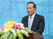 Association works to boost Vietnam-Africa friendship