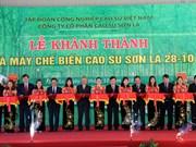 Rubber latex processing plant inaugurated in Son La