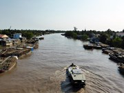 Seminar seeks to address land subsidence in Mekong Delta
