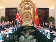 Vietnam, UK hold deputy minister-level political consultation