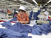 Vietnam posts high labour productivity growth in ASEAN