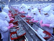 Vietnam records surplus in trade with Canada