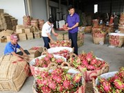 Vietnam likely to be affected by RoK's tougher pesticide rules