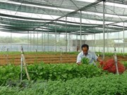 2,200 new agricultural firms formed in 2018