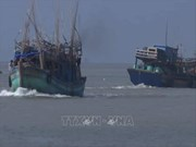 Storm Pabuk sinks many vessels in southern province