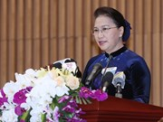Top legislator asks for greater procuracy efforts to combat corruption