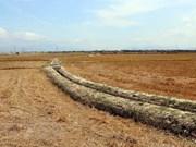 Vietnam, Japan hold fifth environmental policy dialogue