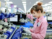 Ha Nam pledges to create optimal conditions for FDI firms