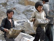 Vietnam still lacks legal framework to protect child labour