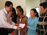 Fatherland Front leader pays pre-Tet visit to An Giang province