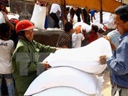 Rice allocated to northern, central provinces ahead of Tet