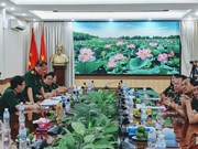 Vietnam, Cambodia military hospitals foster cooperation