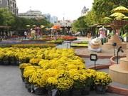 Book street festival, flower street open in HCM City