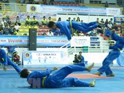 Vietnam's vovinam takes on the world