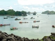 2018 – Successful year for Vietnam's tourism industry