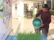 An Giang targets organic agriculture development