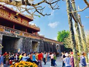 Hue ancient capital – favourite destination for tourists during Tet