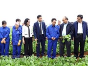 PM calls for application of technology in agricultural production