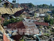 Indonesia to install 10 tsunami warning stations on Bali's beaches