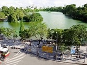Hanoi plans to grow 400,000 trees in 2019