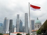 Singapore attracts over 8 bln USD into fixed assets last year