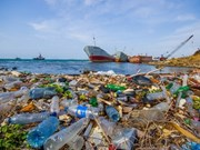 Vietnam takes action to reduce plastic waste