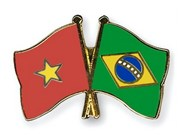 Vietnam strengthens partnership with Brazil
