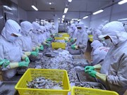 Fisheries sector targets 10 billion USD export value