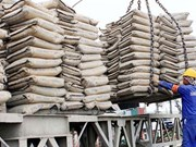 Efficiency improvement crucial for cement industry: experts