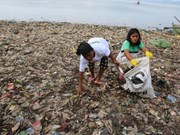 Indonesia: hundreds gather to clean up beach