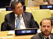 Vietnam attends IPU-UN parliamentary hearing
