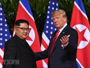 RoK considers any progress through second DPRK-USA Summit significant