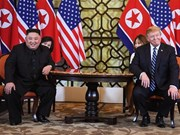DPRK leader affirms readiness for denuclearisation
