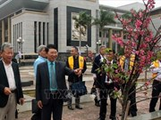 Bac Giang receives 100 cherry blossom trees from Japan