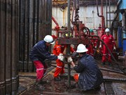 PetroVietnam's revenue hits 4.8 billion USD in two months