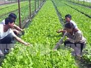 Workshop seeks to help farmers in smart agriculture